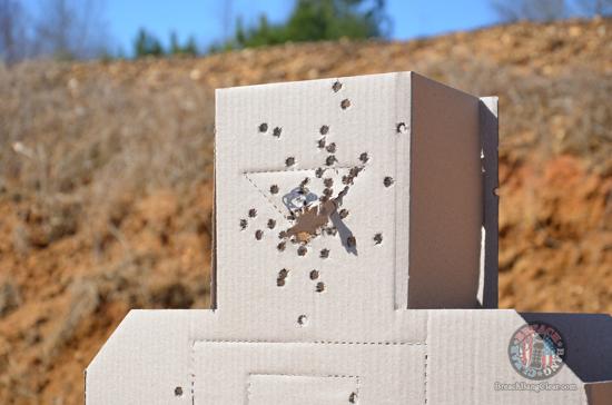 Ammo stopping power vs anatomy Cowan Breach Bang Clear 3D head target