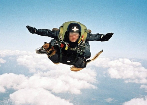 spanish sof parachute free fall norway excercise 588x420 Spanish SF soldiers and their dogs take part in tandem parachute freefall
