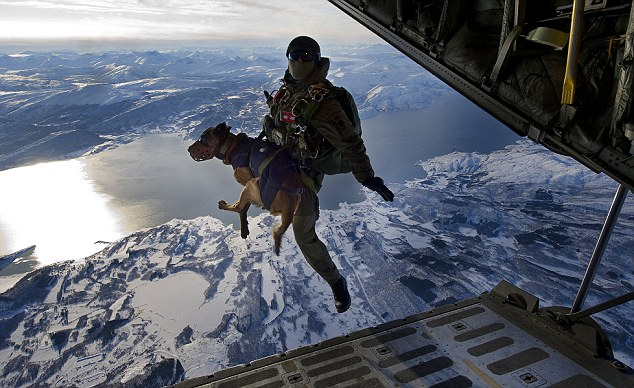 spanish sof parachute free fall Spanish SF soldiers and their dogs take part in tandem parachute freefall
